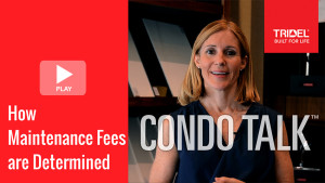 Condo Talk - How Maintenance Fees are Determined