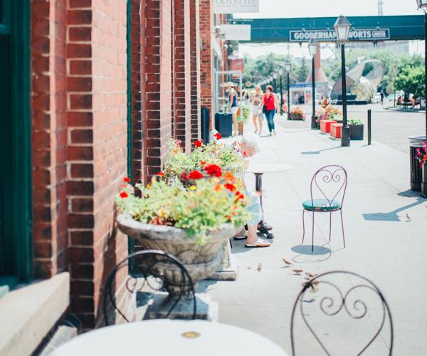 neighbourhood-flowers2
