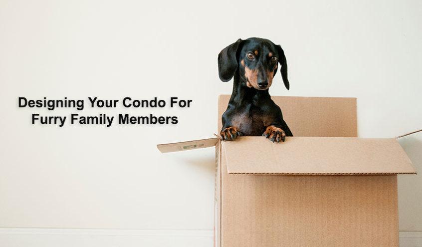 Designing a Pet Friendly Condo Home