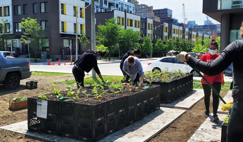 Spring Planting with The Bowery Project