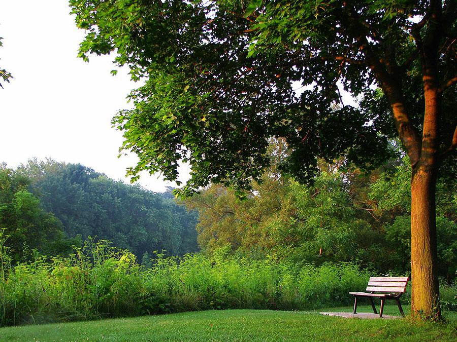 Park located in Etobicoke